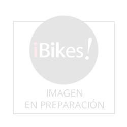 Extractores De Piñon